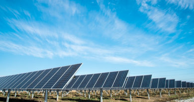 Fotografia de tres paneles solares en un parque de energia solar